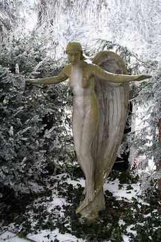 Winter angel. Fluntern Cemetary near Zurich, Switzerland. Photo by azur_murmur