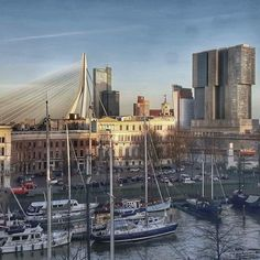 Pin by conny on zalmhaventoren pinterest find this pin and more on rotterdam by rolandspanjaard malvernweather Images