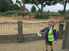 Les Petites Souris, Les Papillons and Les Dauphins adored meeting so many animals at London Zoo today. Children met penguins, goats, giraffes, gorillas, flamingos, butterflies, lions, tigers, camels and zebras to name a few!