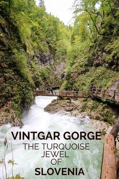 Vintgar Gorge: The Turquoise Jewel of Slovenia - CityoftheWeek Hiking Europe, Europe Travel Guide, Travel Destinations, Travelling Europe, Traveling, Slovenia Travel, Bohinj, Hotels, Best Travel Guides