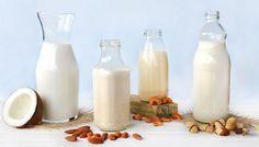 Como fazer leites vegetais II (opções acessíveis) – Tempero Alternativo