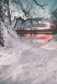 Magnifique scène d'hiver neige, soleil , reflet lac...? Gorgeous!