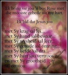 Evening Greetings, Afrikaanse Quotes, Goeie More, You Are Special, Prayers, Blessed, Bible, Inspirational Quotes, Wisdom