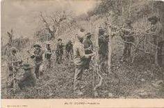 HELDER BARROS: Amarante Agricultura - Homens que fizeram parte de uma agricultura tradicional que já acabou, mas que se destacaram no meio, como neste caso um podador conhecido...