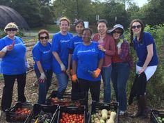 Genworth staff working in the Community Kitchen Garden benefiting Feedmore Inc.