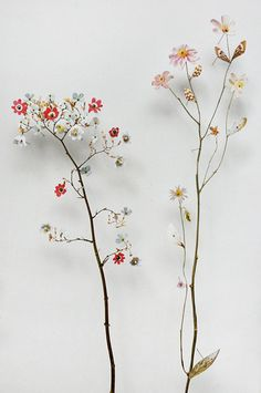 Dutch artist Anne Ten Donkelaar designed these detailed flower compositions with pressed flowers and paper cutouts, creating 3D gardens as an art piece.