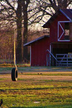 Tire Swing & Barn by Angela Holman