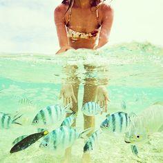 Nicole Warne @garypeppergirl Swimming with sch...Instagram photo | Websta (Webstagram)