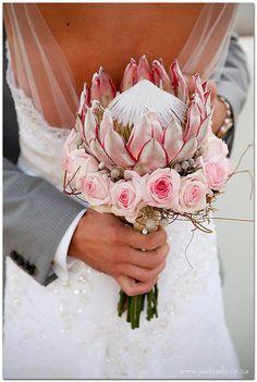 Protea surrounded by roses Protea Wedding, White Roses Wedding, Beach Wedding Flowers, Rose Wedding Bouquet, Wedding Flower Arrangements, Bridal Flowers, Floral Wedding, Protea Bouquet, Protea Flower
