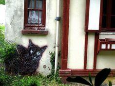 Cat street art stencils