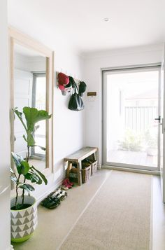 Entryway shoes and coatrack