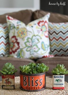 Vintage Container Succulent Planters - House by Hoff