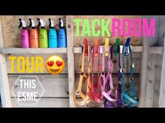 How to Clean Your Halters Horse Tack Rooms, Horse Barns, Cute Horses, Beautiful Horses, Tack Room Organization, Horse Barn Designs, Pony Breeds, Horse Ranch, Room Tour