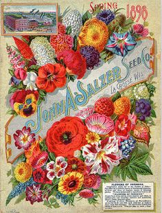 Spring 1898 John A. Salzer Seed Co. catalog cover