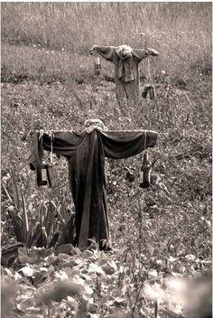 Creepy scarecrows