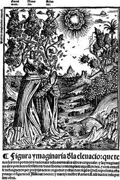 Ramon Llull como Arbol cósmico en la obra Blanquerna, 1521