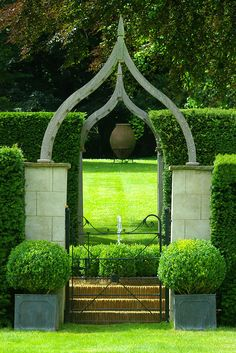 View through the box garden to the upper lawn of Cotswold Hall. Via Nicholsons Garden Design.