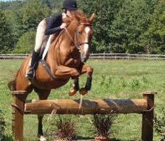 Jumps West | Cross Country Horse Jumps