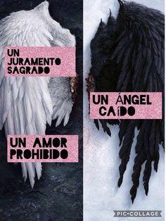 Amo ❤❤❤ Phrase Book, Mr Wonderful, Youre Mine, Book Memes, Tumblr Photography, Book Of Life, I Love Books, Book Club Books, Book Lovers