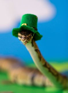 Post with 1361 votes and 30191 views. Tagged with funny, aww, snek; Sneks with funny hets Snakes With Hats, Kinds Of Snakes, Baby Snakes, Pretty Snakes, Beautiful Snakes, Baby Animals, Cute Animals, Cute Reptiles, Cute Snake