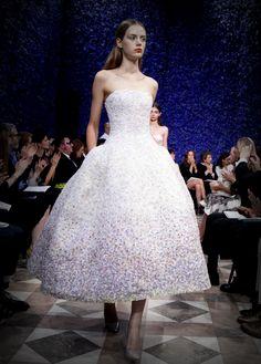 Dior Haute Couture, Fall/Winter 2012