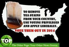 To remove tea stains from your country, use voting privileges and apply liberally. VOTE THEM OUT IN 2014!