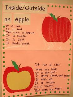 Inside / Outside an apple