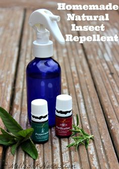 Homemade natural insect repellent spray that works. I can't believe how cheap this is to make.  Best part, no nasty chemicals or pesticides on me or my kids! Knowing how to make our own things is high on my preparedness list.
