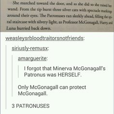 harry potter - minerva mcgonagall