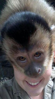 Perfectly Timed Photo -- all you need is a monkey on your back!                                                                                                                                                                                 More