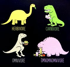 Different kinds of dinosaur
