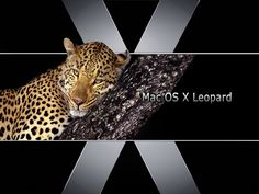 Mac OS X Leopard - desktop achtergronden: http://wallpapic.nl/computer-en-technologie/mac-os-x-leopard/wallpaper-11993