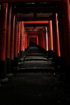 Torii gates of Fushimi Inari shrine, Kyoto, Japan 伏見稲荷大社