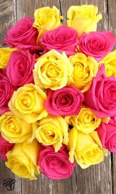 Gorgeous pink and yellow roses delivered directly to your recipient's door. My Flower, Pretty Flowers, Flower Power, Cactus Flower, Exotic Flowers, Purple Flowers, Yellow Roses, Pink Roses, Tea Roses