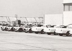 Mustang GT350R Models with Cobras at LAX. From the George Watters Collection.