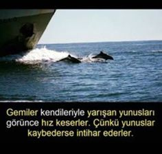 """"""" MuRaT """" I Don T Know, Good To Know, Good Sentences, Interesting Information, Galaxy Wallpaper, I Care, Cool Words, Karma, Good Times"""