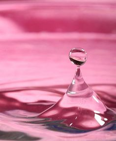 Water drops have become a vendetta for me now, I refuse to give up until I get a killer shot. The pink background was dedicated to my daughter. Magenta, Rose Fuchsia, Purple, Pink Love, Pretty In Pink, Hot Pink, Vintage Pink, I Believe In Pink, Everything Pink