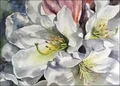 Rhododendron2 Linda Forsberg