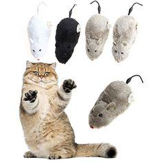Daycount Set of 2 Cat Toy Winding Mechanism Mouse Cat Toy For Cat Dog Pet Trick Playing Toy Plush Rat mechanical Motion Rats Random Color >>> You can get additional details at the image link. (This is an affiliate link) #Cats