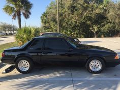 Mustang Cars, Ford Mustang Gt, Notchback Mustang, Dolly Parton Costume, Texas State Trooper, Fox Body Mustang, Coyotes, Foxes, Custom Cars