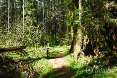 Tohula   Ranger Hole Adventure, Brinnon