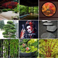 I design a mryiad of styles- Jo-anne Foxcroft Landscape & Garden Designer