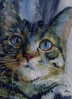 Mystery Tabby by 'LoveringArts' : Genius in Watercolour Portraiture www.redbubble.com...