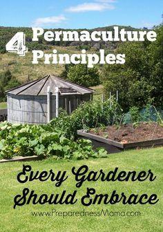 4 Permaculture Principles Every Gardener Should Embrace | PreparednessMama
