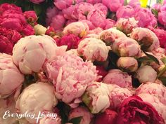 Seattle's Pike Place Market – Everyday Living