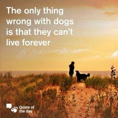 I have always wanted all my dogs to live forever!