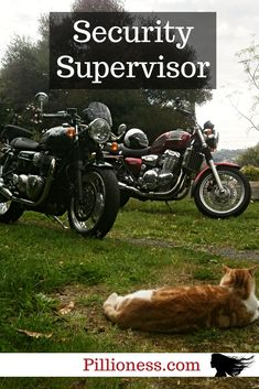 If a motorcycle cat is in charge of your bike security, you have nothing to worry about! Cat Love, This Is Us, Biker, Motorcycles, Fur, Cats, Girls, Gatos, Little Girls