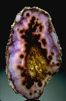 Agate is a variety of chalcedony (quartz) composed of concentric bands of colors. Agates form in cavities left by gas bubbles in cooling lava. Silica-rich groundwater builds layers of crystals on the cavity walls.