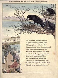 Caw Caw by R.M. illustrated by J.B.