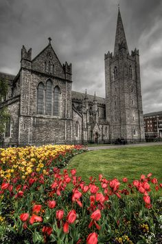 Saint Patrick's Cathedral in Dublin. This is a BEAUTIFUL church. Got to see it on my trip....breathtaking.